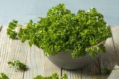 Prezzemolo riccio organico verde crudo Immagine Stock Libera da Diritti