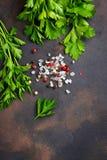 Prezzemolo, sale e pepe Priorità bassa culinaria fotografia stock libera da diritti