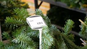 Prezzo da pagare sulla vendita di Natale degli alberi in Europa, Norimberga, Germania Vendita dei rami dell'abete per il Natale s archivi video