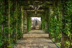 Pérgola verde Imagen de archivo libre de regalías