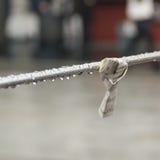 Prière vers Tokyo Photographie stock libre de droits