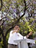 候选人墨西哥总统pri 库存照片