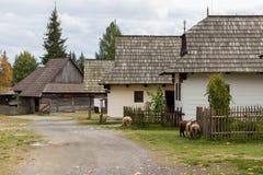 Pribylina - tradycyjna Slovakian wioska fotografia royalty free