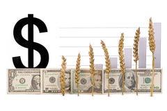 Price growth grain Royalty Free Stock Image