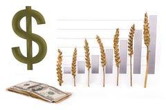 Price growth grain Royalty Free Stock Photo