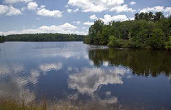 Price Lake in the Summer Stock Image
