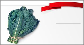 Price tag for the sale of lettuce royalty free stock images