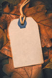 Price tag from with twine on dry autumn leaves background Royalty Free Stock Photography