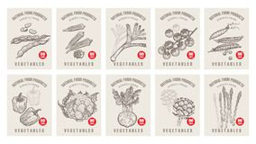 Price tags for vegetables. Labels with various vegetables and inscriptions. Set templates price tags for shops and markets of organic vegetarian food. Vector Stock Image