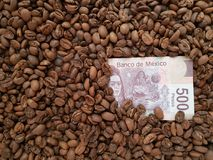 Business coffee, 500 mexican pesos bill with coffee beans background. Price and value of coffee, loads of coffee beans toasted, ingredient for drinks with Royalty Free Stock Photo