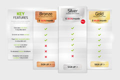 Pricing plans for websites and applications in metal style Royalty Free Stock Images