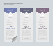 Pricing Table Template with Three Plan Type. Royalty Free Stock Photos