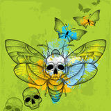 Prickig döds mal för hök för huvud eller Acherontiaatropos i svart med skallar och fjärilar på den texturerade gröna bakgrunden Arkivbilder