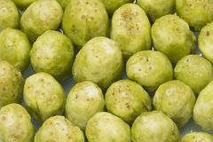 cactus pears Stock Image