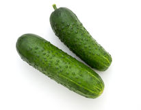 Prickly cucumber isolated Royalty Free Stock Image