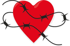 Prickly heart. Heart with barbed wire with shadow on white Stock Photography