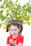 Prickly Lemon Thorns. Young girl inspects hand after getting punctured by a prickly lemon thorn stock photos