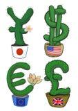 Prickly money Stock Photography