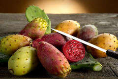 Free Prickly Pear Stock Photography - 15707532