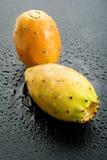 Prickly pear Royalty Free Stock Photos