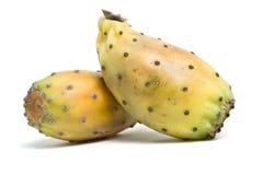 Prickly Pear Stock Photos