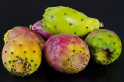 Prickly pear. Like all true cactus species, prickly pears are native only to the Western hemisphere; however, they have been introduced to other parts of the Stock Image