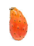 Prickly pear Stock Photo