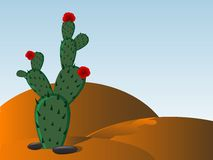 Prickly pear Royalty Free Stock Photography