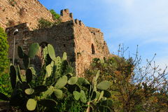 Prickly pear and fortress. Prickly pear and the old fortress of taormina in sicily (italy Stock Image