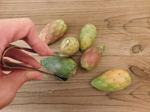 Prickly pear to eat Stock Photos