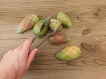 Prickly pear to eat Stock Image