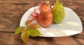 prickly pears Arkivbilder
