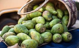 Prickly Pears on a table. Prickly pears on display on a table. Prickly pears on display royalty free stock photos