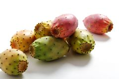 Prickly pears isolated. Close up Prickly pears isolated stock images
