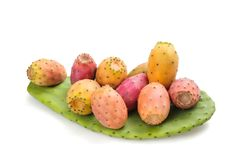 Leaf with prickly pears. Prickly pears on leaf isolated on white background stock photography