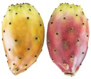 Prickly pears or opuntia berries on white background. Clipping path stock photography