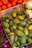 Prickly pears for sale in a box with more fruits and vegetables around. Prickly pears (or Higos Picos in Spanish) for sale in a store dedicated to stock photography