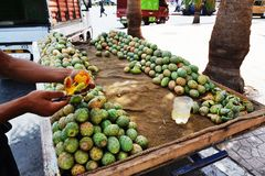 Prickly Pears Seller. Young man selling prickly pears from a stall in Marrakesh city, Morocco stock photography