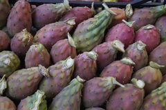 Pricly pears Royalty Free Stock Photos