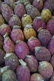 Pricly pears Stock Image