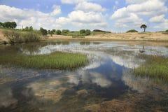 Priddy池塘,萨默塞特英国 免版税库存照片