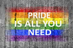 Pride is all you need and LGBT flag painted on background texture. Close Stock Photography