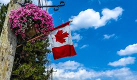 Pride. From Canada day, amazing pride in their country royalty free stock photography