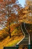 Prienai widoku punktu wzgórza kroki Obraz Royalty Free