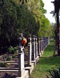 Priest cementery at Sag Monastery Timisoara Royalty Free Stock Photography