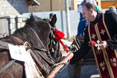 The priest feeds a horse Royalty Free Stock Photography