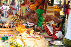 Priests busy at indian temple ceremony Stock Image