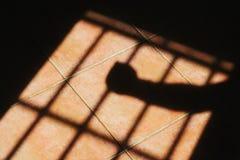 Prigione Immagini Stock Libere da Diritti