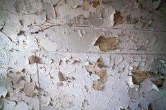 Prigione abbandonata, Patarei a Tallinn, Estonia Immagine Stock Libera da Diritti