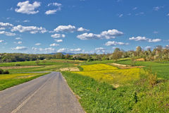 Prigorje region spring lanscape road Royalty Free Stock Photo